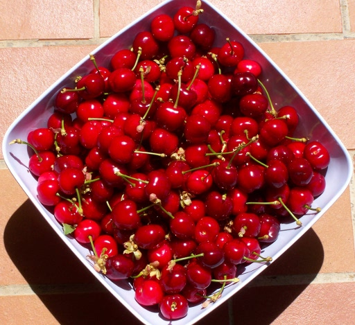 A plate of cherries from my garden